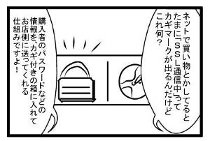 007_ssl1.jpg